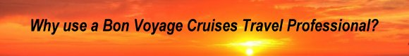 Why use a Bon Voyage Cruises Travel Professional